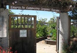 Entrance to Community Organic Garden